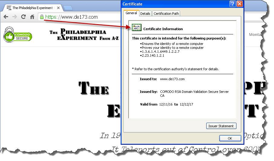 DE173.COM SSL Certificate